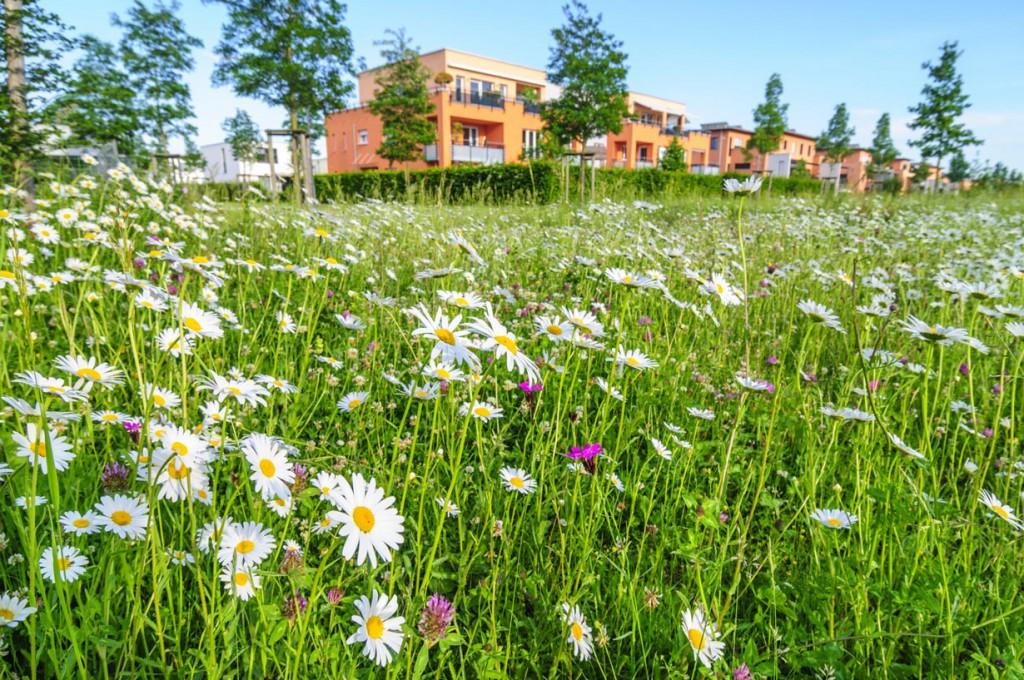 Selbst Großstädte werden immer grüner und bieten erstklassigen Wohnwert. Bild: fotolia