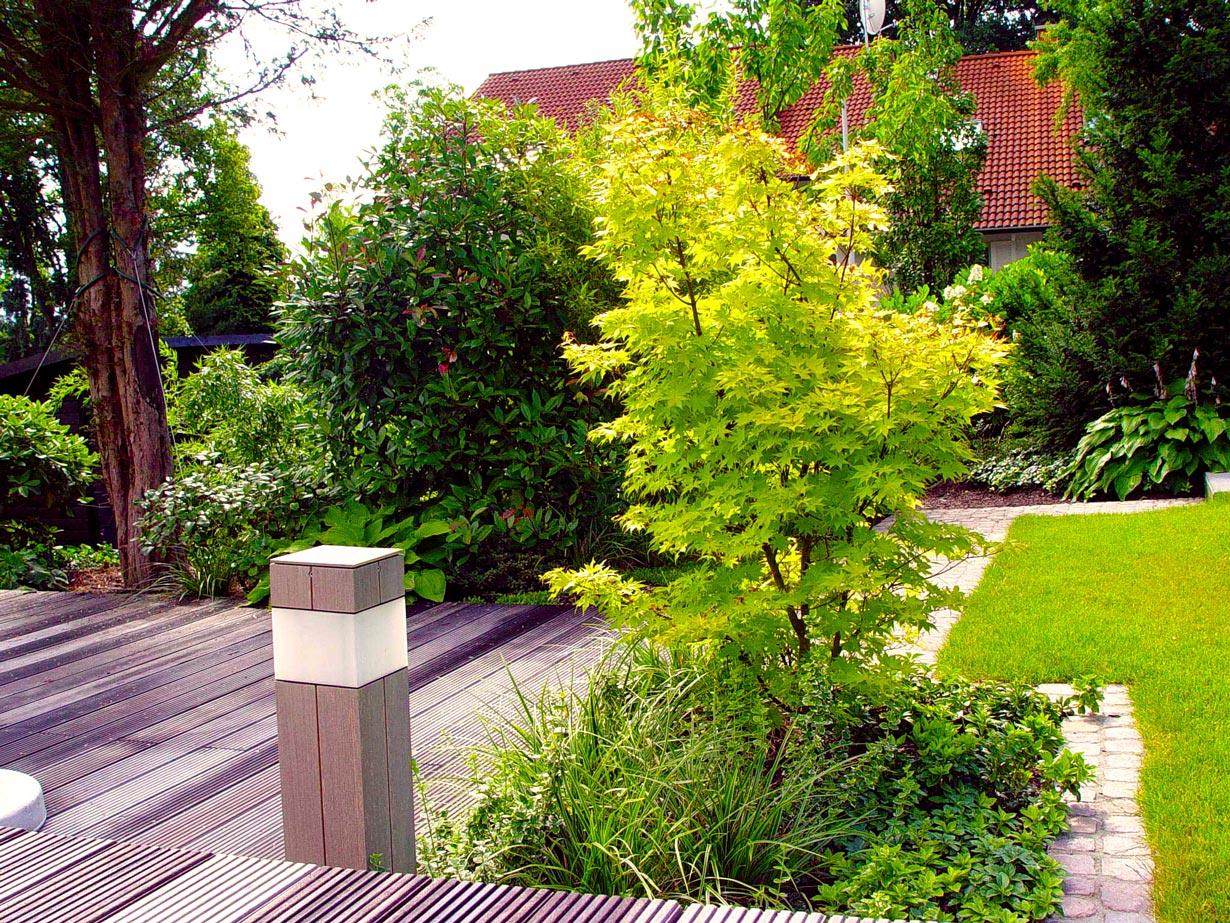 Kleine Bäume Für Vorgarten : 7 tipps f r kleine b ume ~ Michelbontemps.com Haus und Dekorationen
