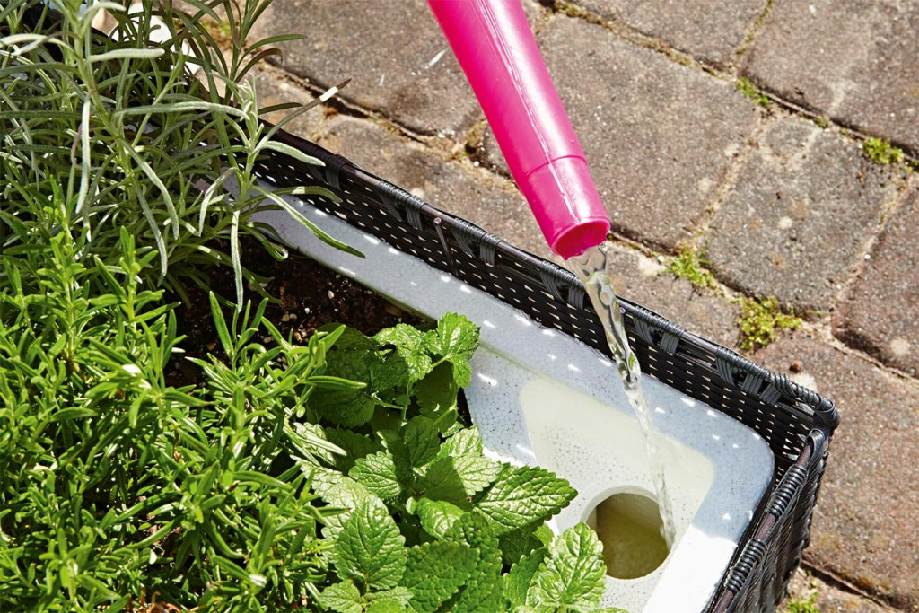 Besonders praktisch ist das Wasserreservoir in der Mini-Garten Box von Floragard, das sich einfach an der Ecke befüllen lässt. Bild: tdx/Floragard