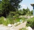 Der Schwimmteich bereichert in jeder Form das Aussehen und Ambiente eines Gartens. Er ist schön anzusehen und vielseitig nutzbar. Bildquelle: tdx/BGL