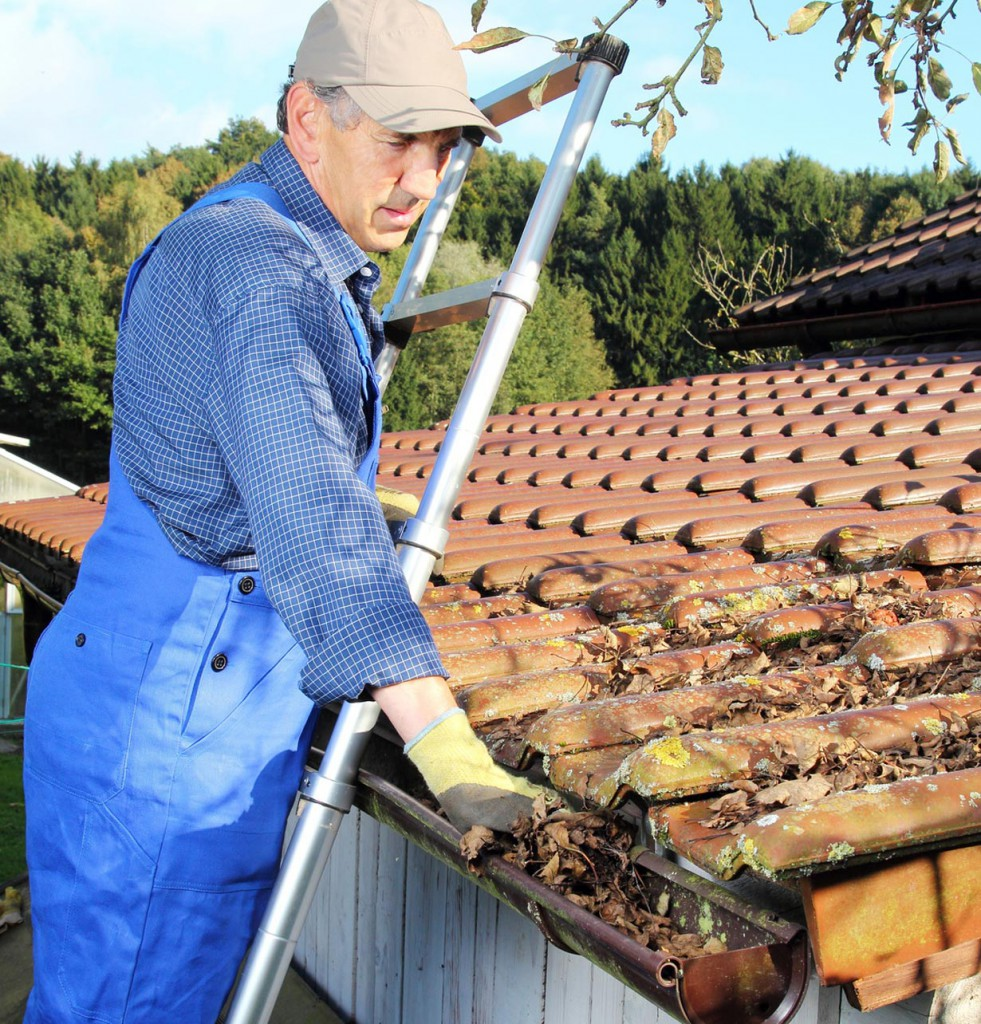 Sollten noch Laubreste vom letzten Herbst in der Dachrinne sein, dann ist eine gründliche Entfernung sinnvoll. Foto: fotolia