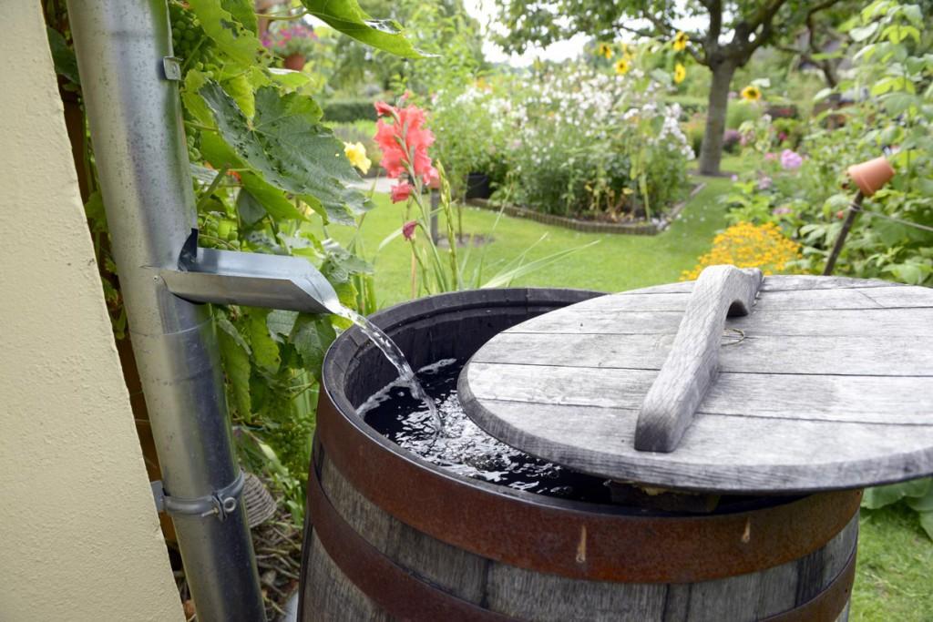 Die Regentonne im Garten ist die einfachste Art, Regenwasser nutzen zu können. Bild: fotolia