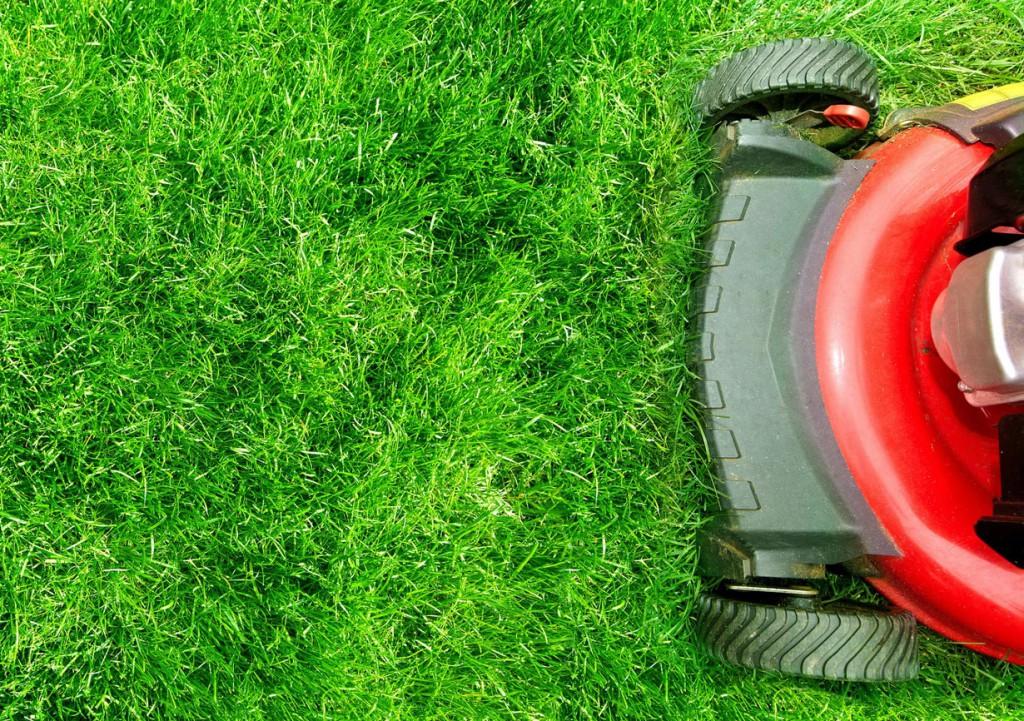 Rasenmähen ist eigentlich keine Kunst, dennoch sind ein paar Regeln zu beachten. Bild: fotolia