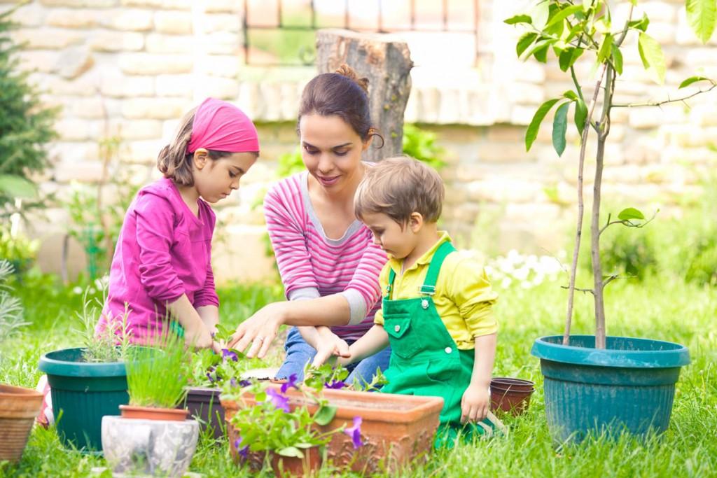 Pflanzen sollten im Frühling umgetopft werden, damit sie in der frischen, nährstoffreichen Erde und eventuell einem größeren Kübel besser wachsen können. Bild: tdx/fotolia