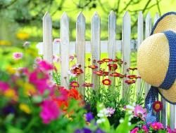 Zum Bauerngarten passt, was gefällt. Bild: fotolia