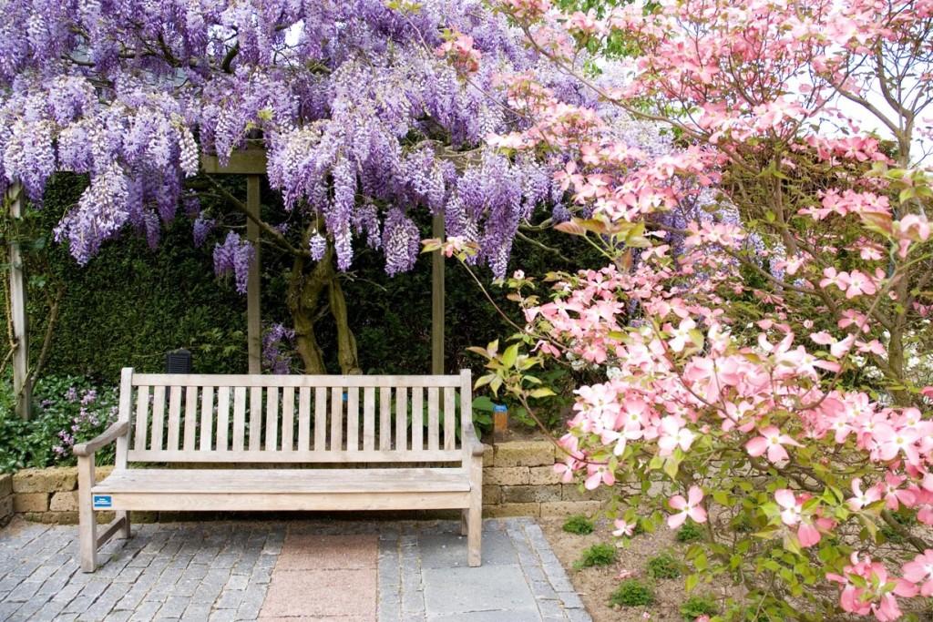 Erholung vom Alltag im selbsterschaffenen Paradies – zum Garten-Glück braucht man Privatheit. Bild: GPP