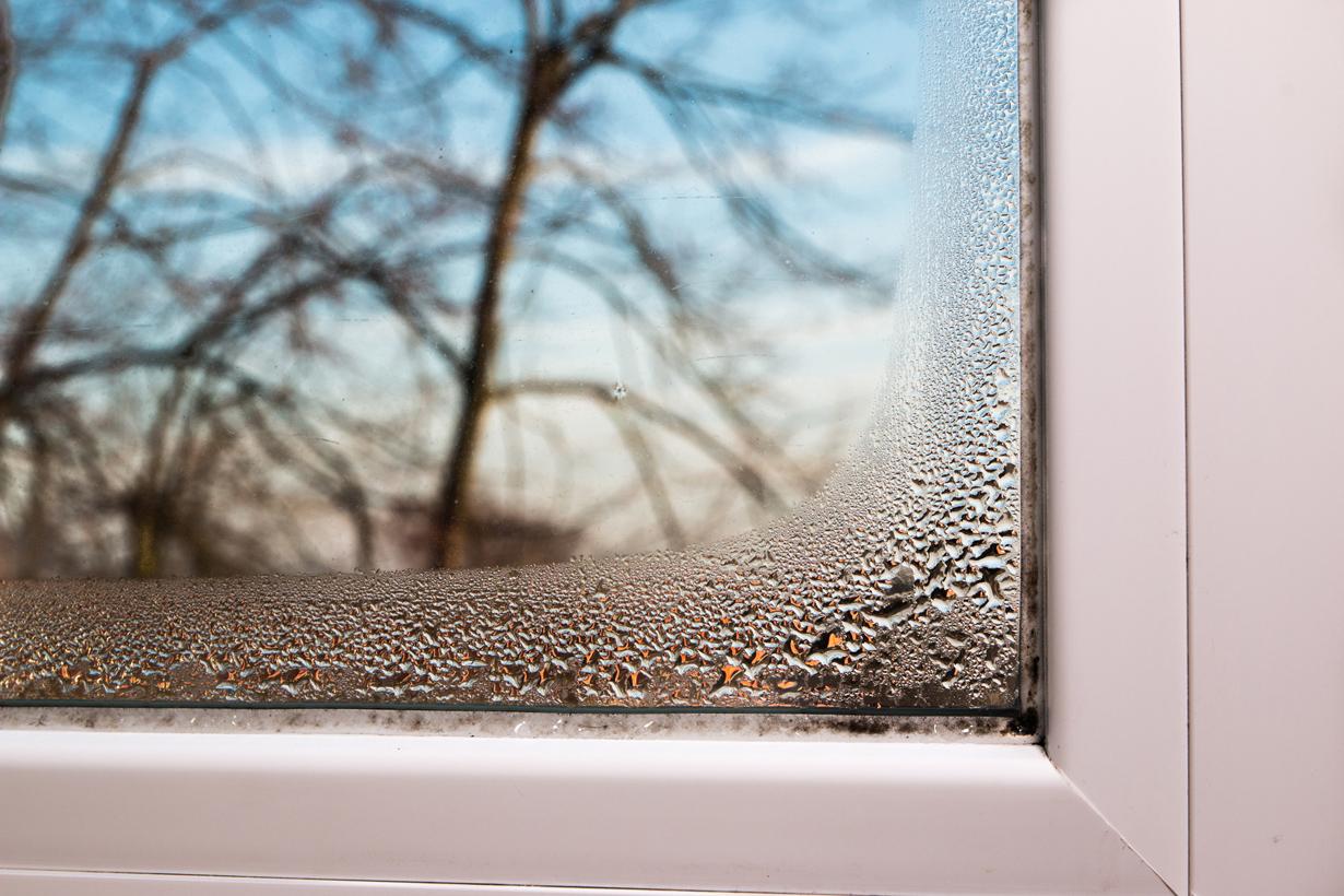 """Dass ein Wohnraum unzureichend gelüftet wird, erkennt man nicht nur an der sogenannten """"stehenden Luft"""". Auch Kondensat am Fenster deutet darauf hin. Bildquelle: tdx/homesolute.com/Fotolia"""