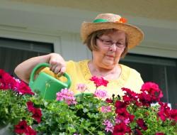 Damit auf Balkon und im Garten eine farbenfrohe Blütenpracht entsteht, ist in den warmen Monaten das Gießen besonders wichtig. Allerdings sind beim Gießen einige Dinge zu beachten. Zu viel oder zu wenig Wasser kann den Blumen schnell Schaden zufügen. Bild: Fotolia